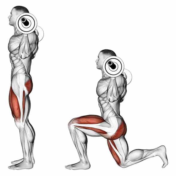 Мышцы, которые работают во время выпадов