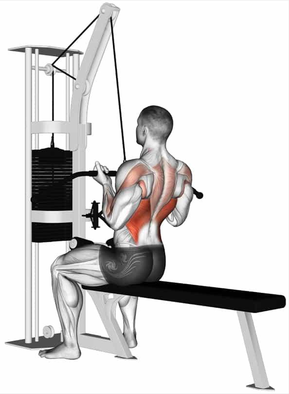 Перечень работающих мышц при выполнении упражнения