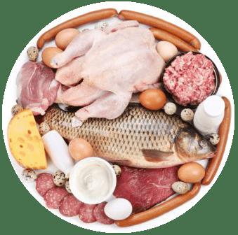 Источники белка на правильном питании